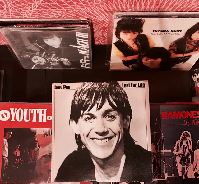 BertoLive Iggy Pop vinyle collection